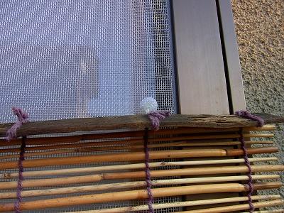 網戸に「プニョットピン」で雨よけ・日よけ・目隠し素材を固定しています。
