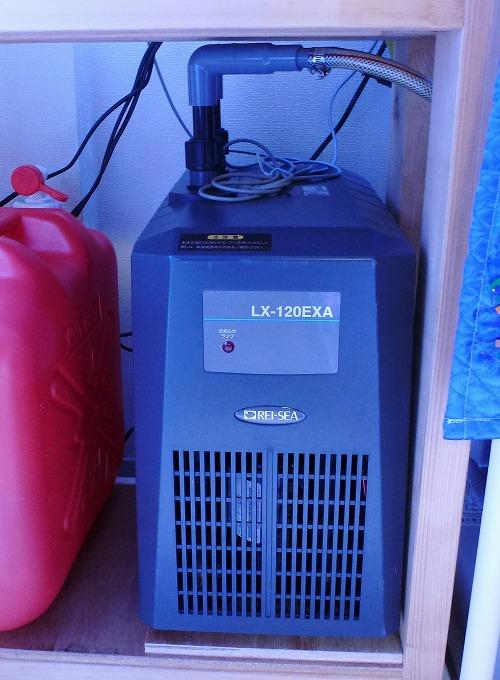 LX-120EXA.jpg