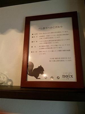 noa6 (2)