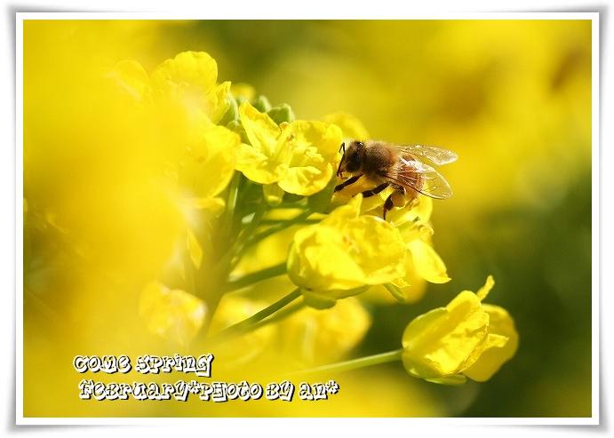 20110221_0363.jpg