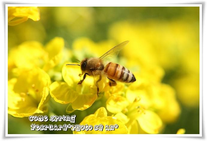 20110221_0415.jpg