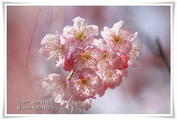 20110304_1555.jpg