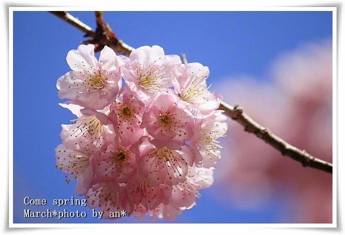 20110304_1561.jpg