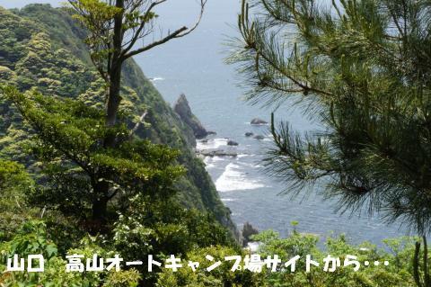 DSC00333_convert_20120929115122.jpg