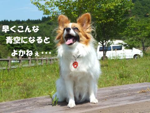 DSCF1142_convert_20120626134524.jpg