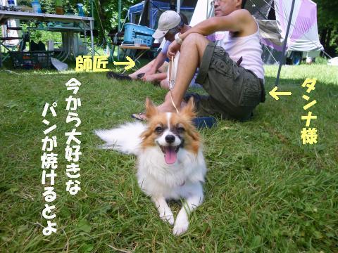 IMGP0837_convert_20120827114844.jpg