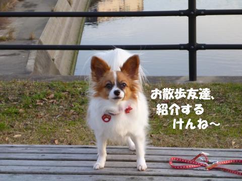 P1000020_convert_20121218103706.jpg