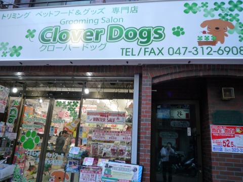 clover dogs