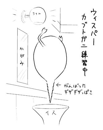 wis03.jpg