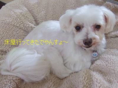 2010_10080004.jpg