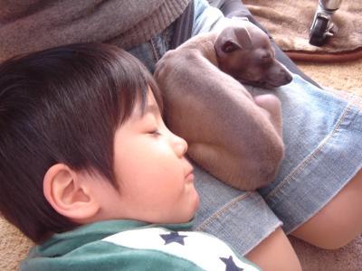 豺サ縺・ッ拈convert_20101021165034
