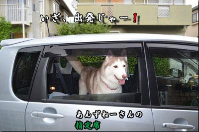 DSC_0032_edited-1.jpg