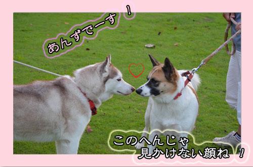 DSC_0200-21.jpg