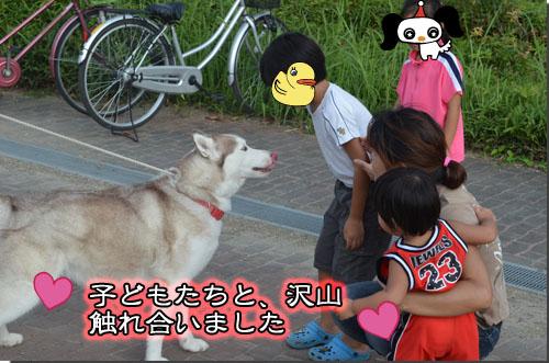 DSC_0625-2.jpg