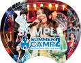 茅原実里 SUMMER CAMP2 ライブBD&DVD TEAM minorhythm用特典「オリジナルうちわ 表」