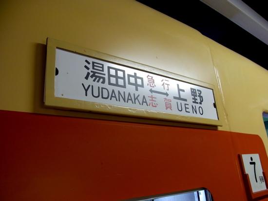 YOKOKAWASAaokitakao002.jpg
