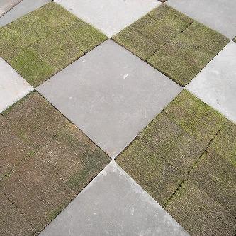 青トラな外構14 チェッカーマークなコンクリートと芝生