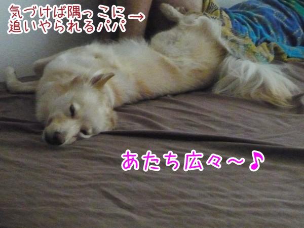201200901_1.jpg