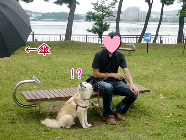 20120623_1.jpg