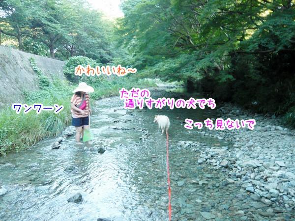 20120801_5.jpg