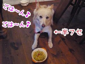 20120806_19.jpg