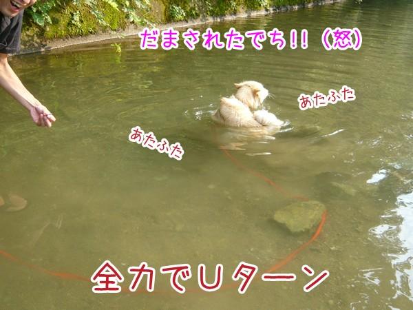 20120903_6.jpg
