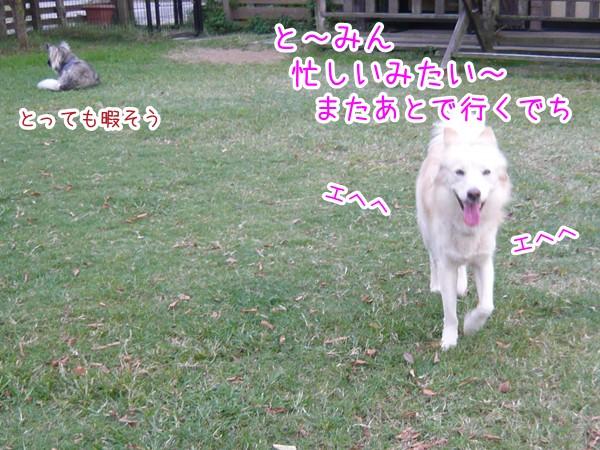 20120905_7.jpg