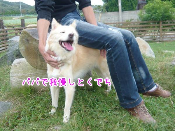 20120905_8.jpg
