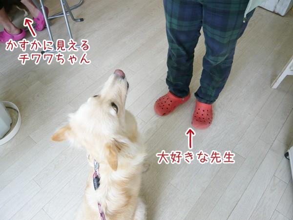 20120920_2.jpg