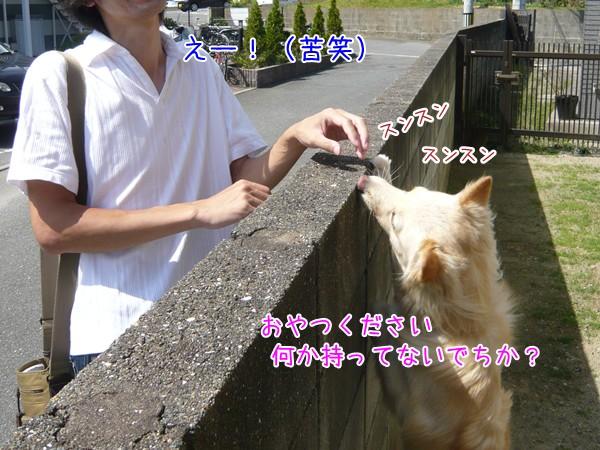 20120926_5.jpg