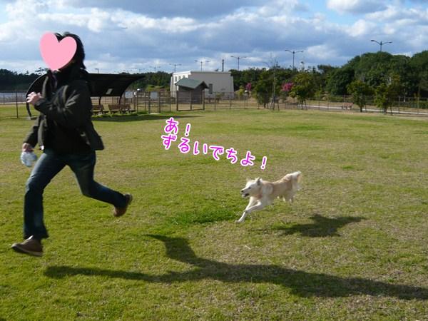 20121015_4_1.jpg