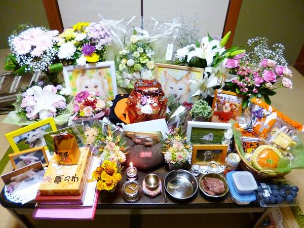 20121105_4.jpg