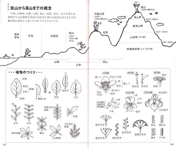 110404zukan5.jpg