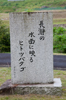 110522nakatugawa2.jpg