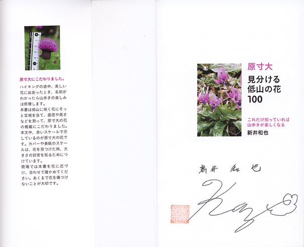 120606yamakei2.jpg