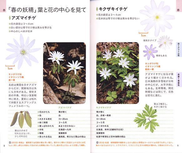 120606yamakei5.jpg