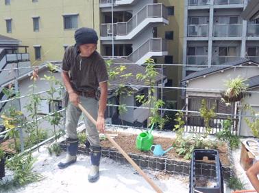 緑化基盤の整備