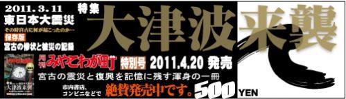 2011_04_bana.jpg