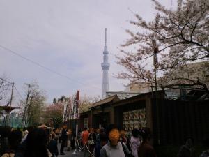 2012.04月の中村座と桜とスカイツリー