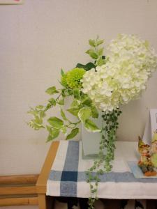 6月のサロンの花
