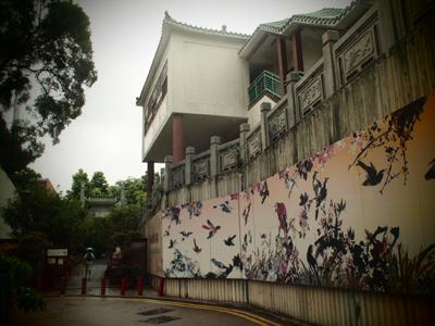 キレイな鳥達が描かれた壁