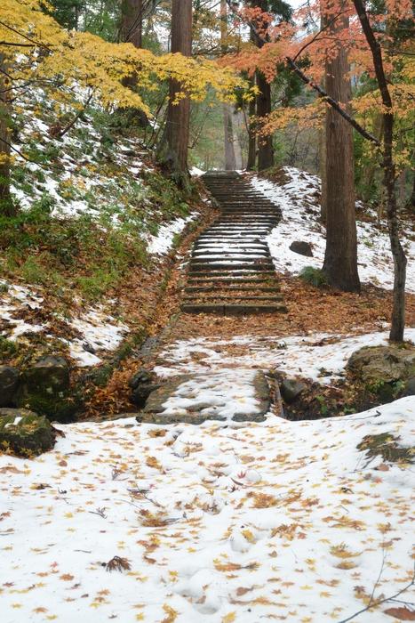 初雪の残る公園-2