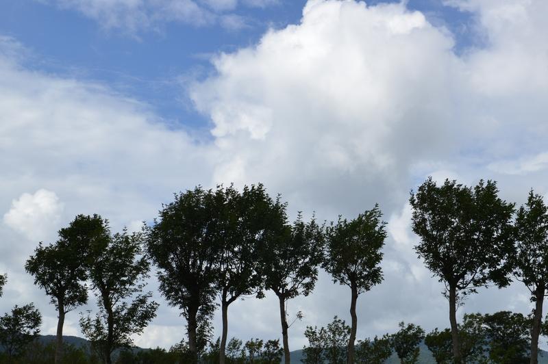 三連休の雲-3