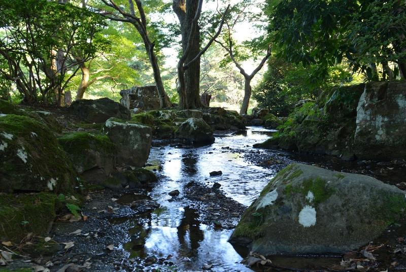 公園の小川-3