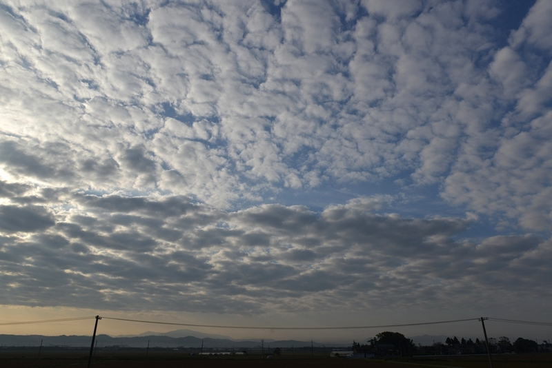 秋の空 朝のウロコ雲-2