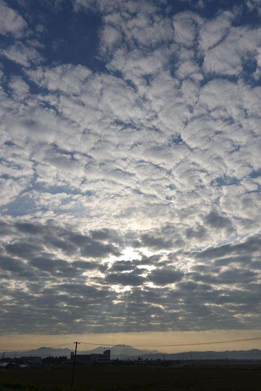 秋の空 朝のウロコ雲-3