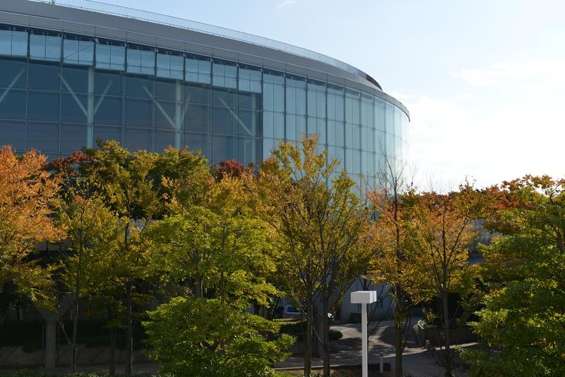 秋と建物-1