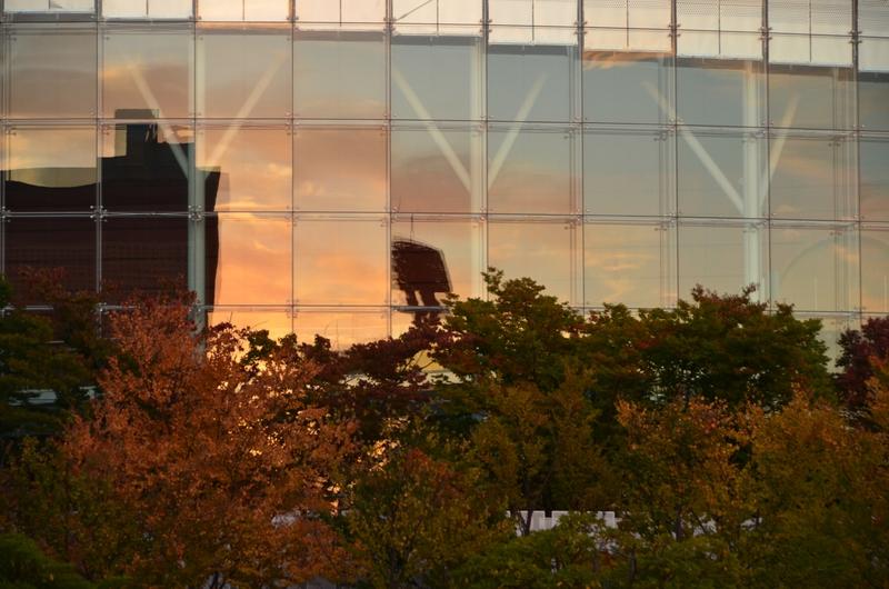 秋と建物-3