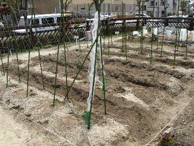 2010-04-30_11-16-13.jpg