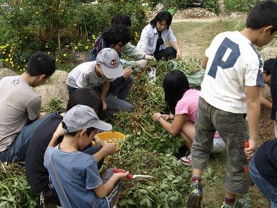 2010-10-23_09-47-39.jpg